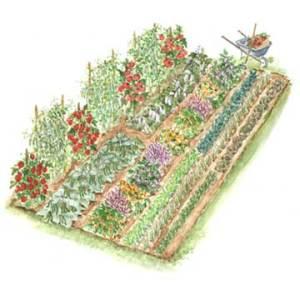 vegetable garden layouts  easygoing organizer, Garden idea